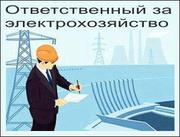 Техническое обслуживание электрохозяйства,  электрооборудования - foto 1