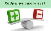 Кадровый аудит для организации и ИП в Беларуси